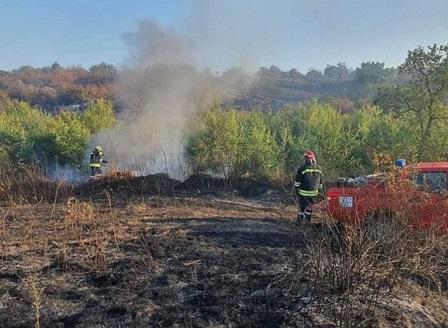 Пожарът в Хасковско е потушен