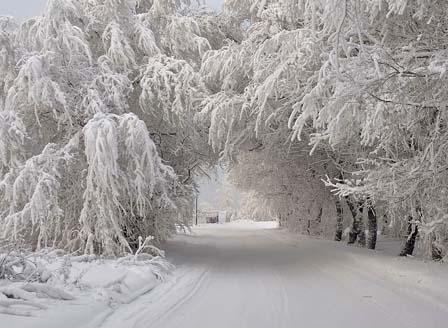 Усложнена зимна обстановка в цялата страна