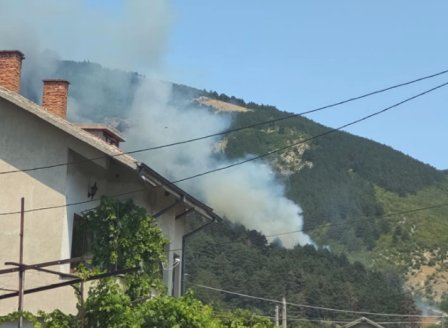 Пожар в борова гора в района на община Твърдица