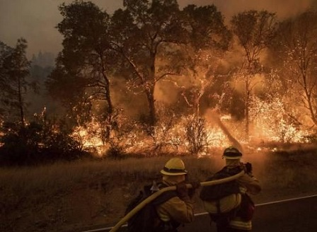 Близо 8,000 души са евакуирани в Калифорния заради горски пожари