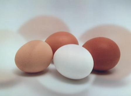 Открита e партида яйчен прах с наличие на фипронил в България