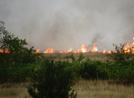Евакуираха две села заради пожара в Кресненското дефиле