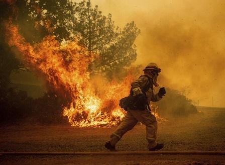 Горските пожари в Северна Калифорния са най-големите в историята на щата