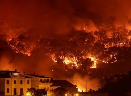 Пожарът в Португалия се разраства, евакуират жители в Алгарве