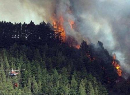 Няма пострадали българи при пожарите на Канарските острови