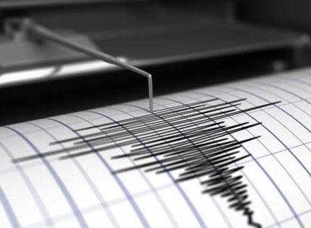Земетресение 5,9 по Рихтер разтърси Индонезия