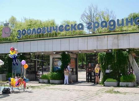 Столичният зоопарк стартира онлайн зооучилище