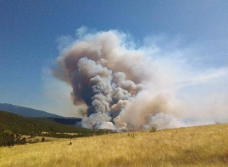 Частично бедствено положение в 4 общини заради големия пожар в Хасковска област