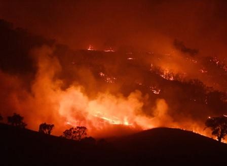 Мощни пожари взеха жертви в Перу, огнена стихия бушува и в Амазония и Арктика