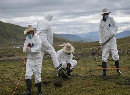 Нови смъртни случаи на чума в Китай